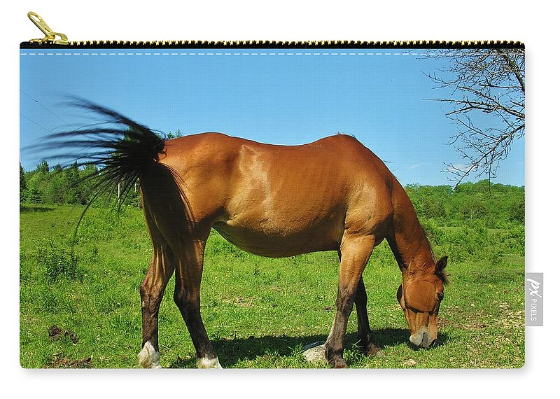 Horse Carry-all Pouch featuring the photograph Tail Swatting Flies by Sherman Perry