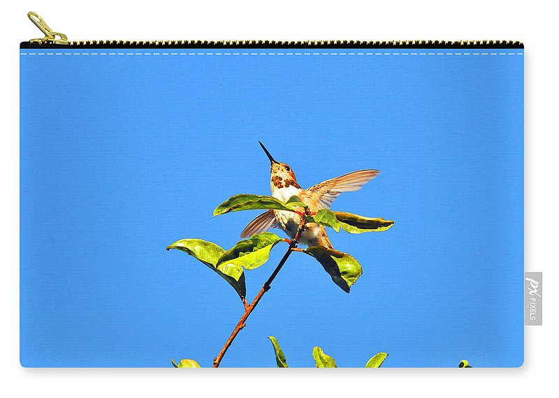 Hummers Carry-all Pouch featuring the photograph Take Off by Lynn Bauer