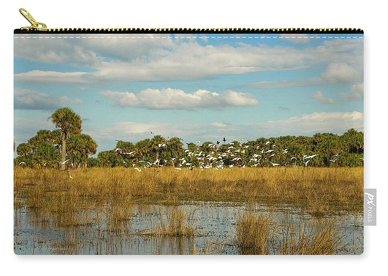 Swamp Carry-all Pouch featuring the photograph Taking Flight by Cindy Tiefenbrunn