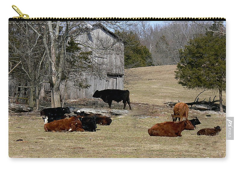 Barn Carry-all Pouch featuring the photograph Taking It Easy by Ericamaxine Price