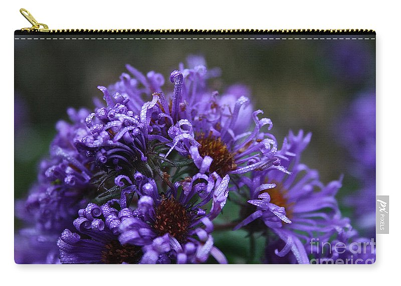 Flower Carry-all Pouch featuring the photograph Tender Tendrils by Susan Herber