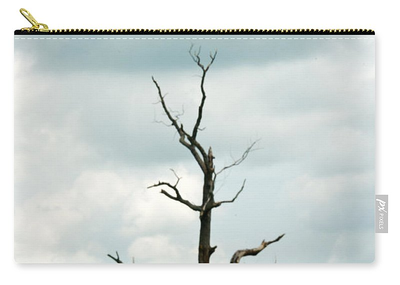 Lone Carry-all Pouch featuring the photograph Tennessee Lone Tree by Douglas Barnett