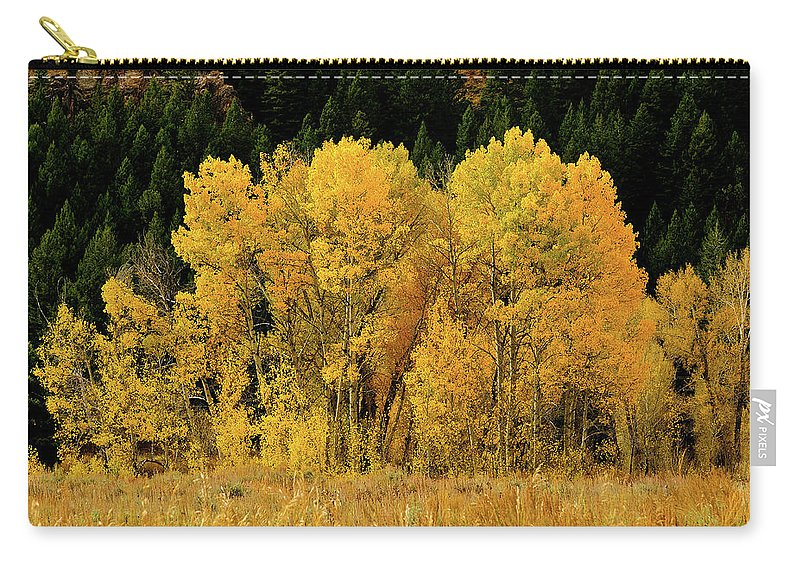 Grand Teton National Park Carry-all Pouch featuring the photograph Teton Autumn Foliage by Greg Norrell