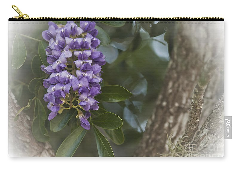 Texas Mountain Laurel Carry-all Pouch featuring the photograph Texas Mountain Laurel by Kim Henderson
