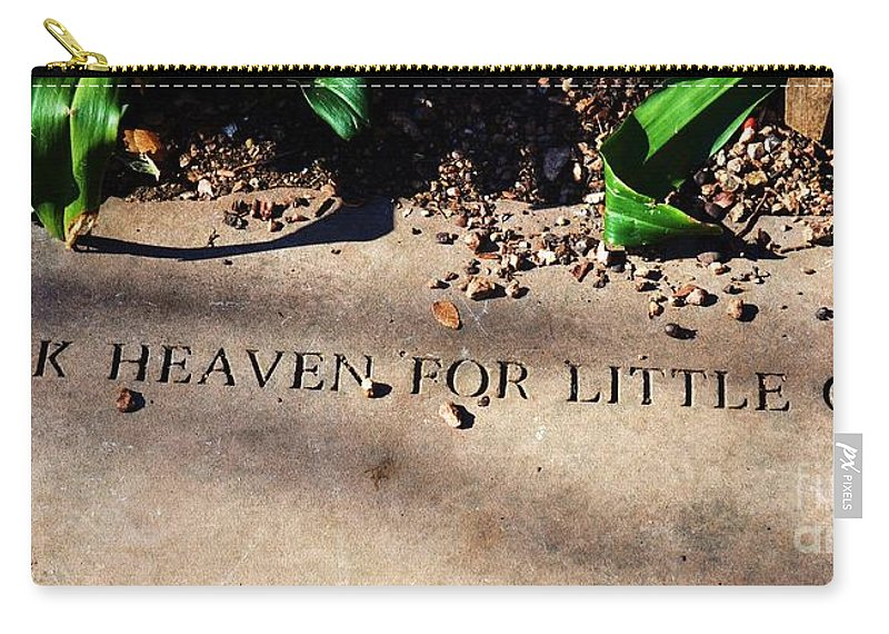 Girls Carry-all Pouch featuring the photograph Thank Heaven For Little Girls by Debbi Granruth