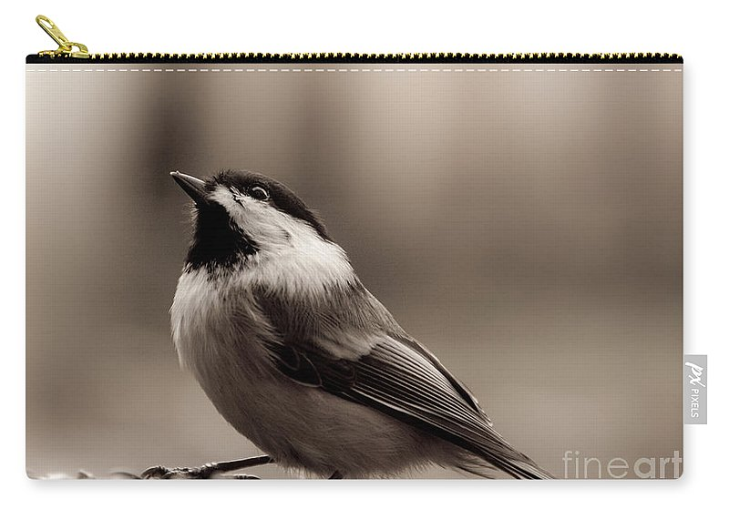 Chickadee Carry-all Pouch featuring the photograph Thankful by Cheryl Baxter