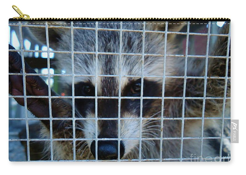 Raccoon Carry-all Pouch featuring the photograph Thanks by Art Dingo