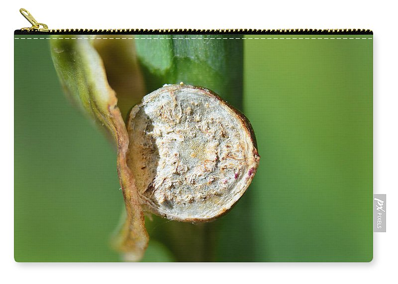 Nature Carry-all Pouch featuring the photograph Thd Daylily Was Here by Debbie Portwood