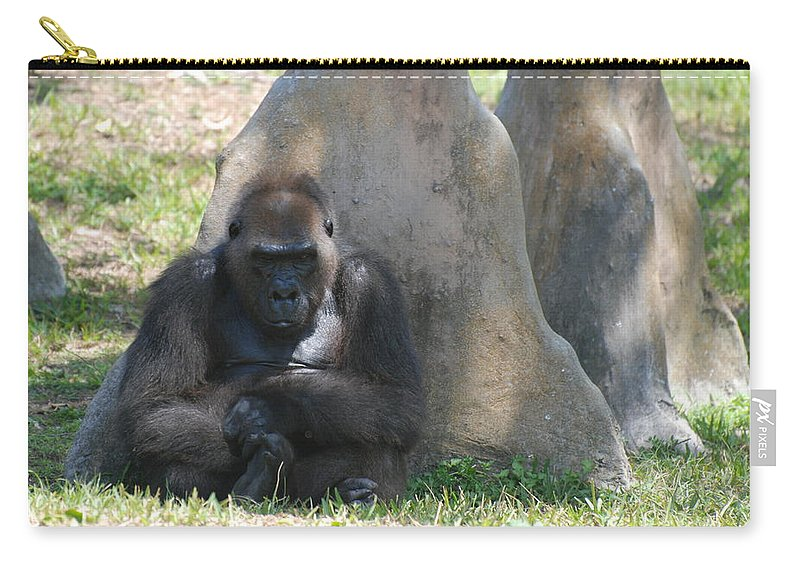 Animal Carry-all Pouch featuring the photograph The Angry Ape by Rob Hans