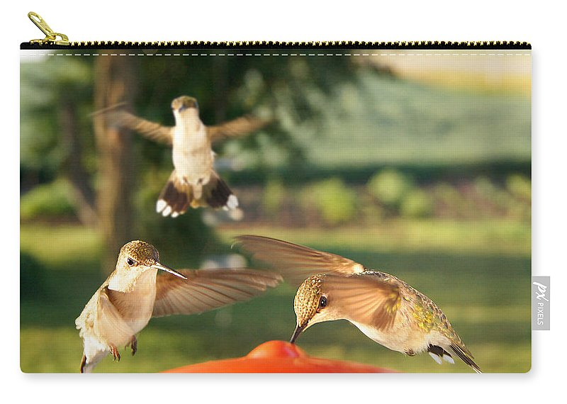 Bird Carry-all Pouch featuring the photograph The Breakfast Club by Bill Pevlor