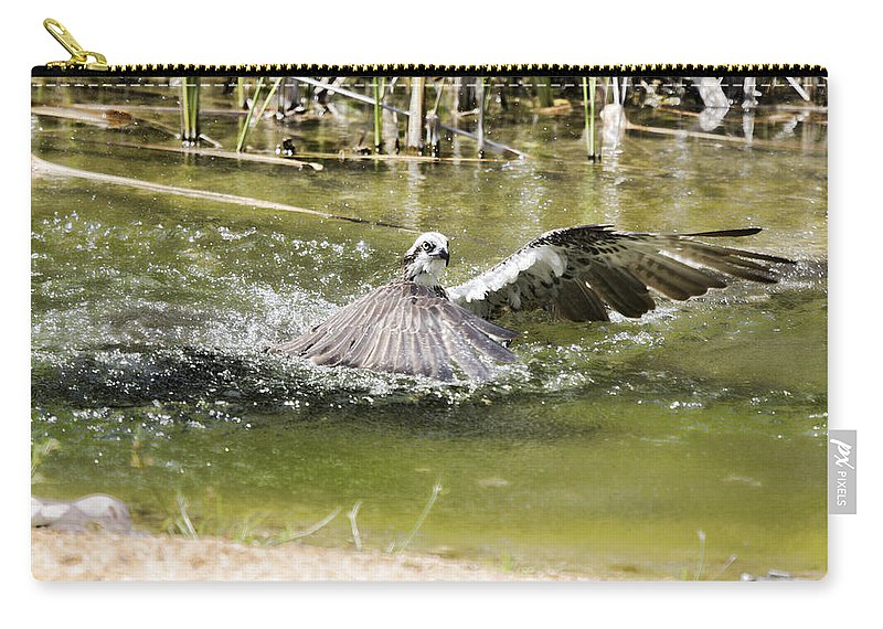 Osprey Carry-all Pouch featuring the photograph The Catch by Douglas Barnard