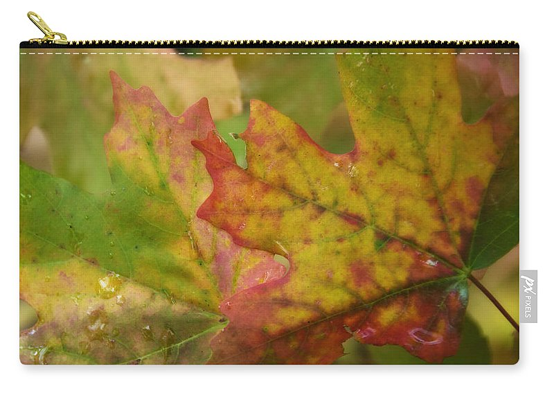 Maple Leaves Carry-all Pouch featuring the photograph The Colors Of Fall by Saija Lehtonen