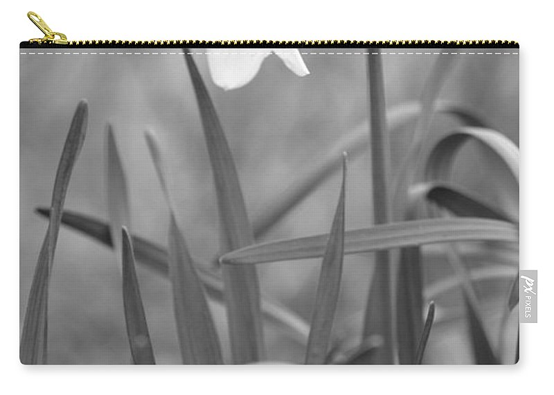 Flower Carry-all Pouch featuring the photograph The Daffodil In Black-and-white by JD Grimes