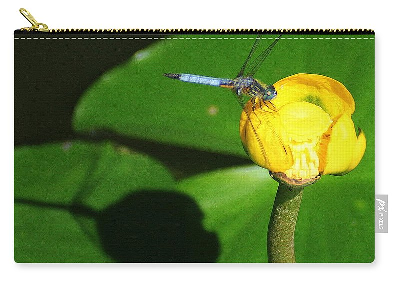 Dragonfly Carry-all Pouch featuring the photograph The Dragonfly And Its Shadow by Laurel Talabere