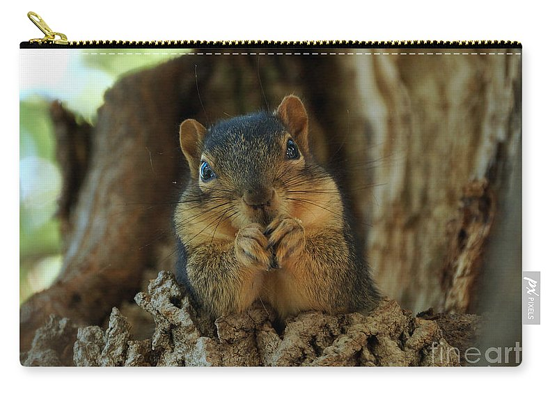 Squirrel Carry-all Pouch featuring the photograph The Dug Out by Lori Tordsen