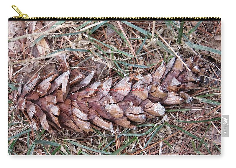 Pine Fruit Carry-all Pouch featuring the photograph The Fallen Pine by Sonali Gangane
