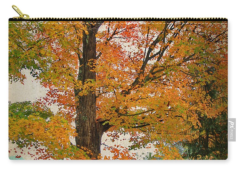 Autumn Carry-all Pouch featuring the photograph The Fay Tree by Deborah Benoit