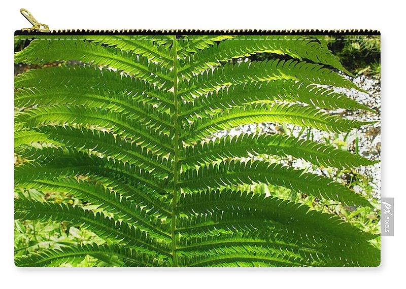 Fern Carry-all Pouch featuring the photograph The Fern by Sherman Perry