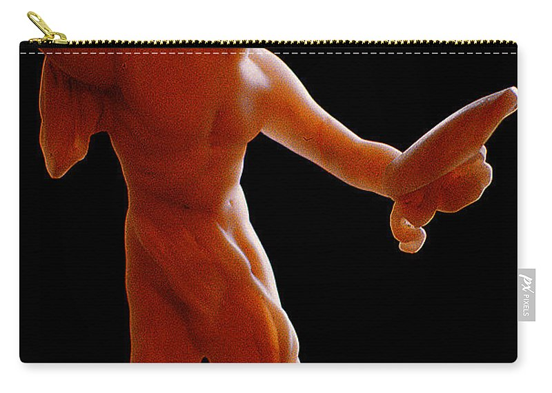 Figurine Carry-all Pouch featuring the photograph The Figurine by Mike Nellums