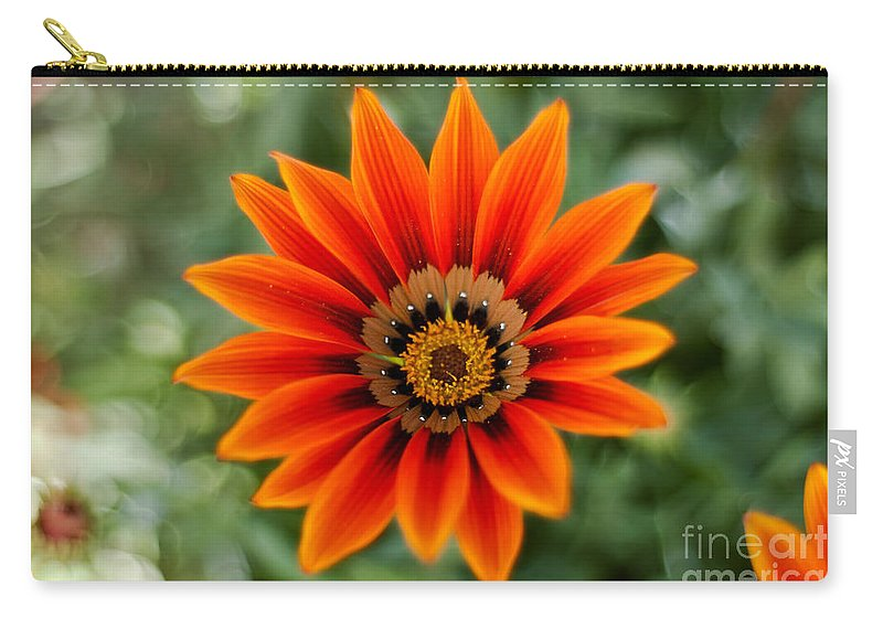 Flower Carry-all Pouch featuring the photograph The Focused Eye by Syed Aqueel