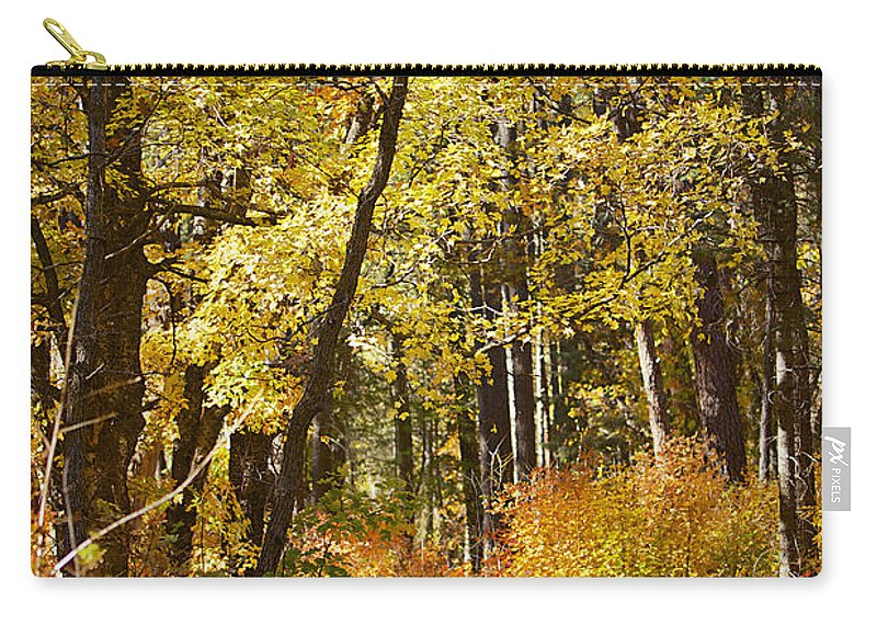 Forest Carry-all Pouch featuring the photograph The Forest Beckons by Phyllis Denton