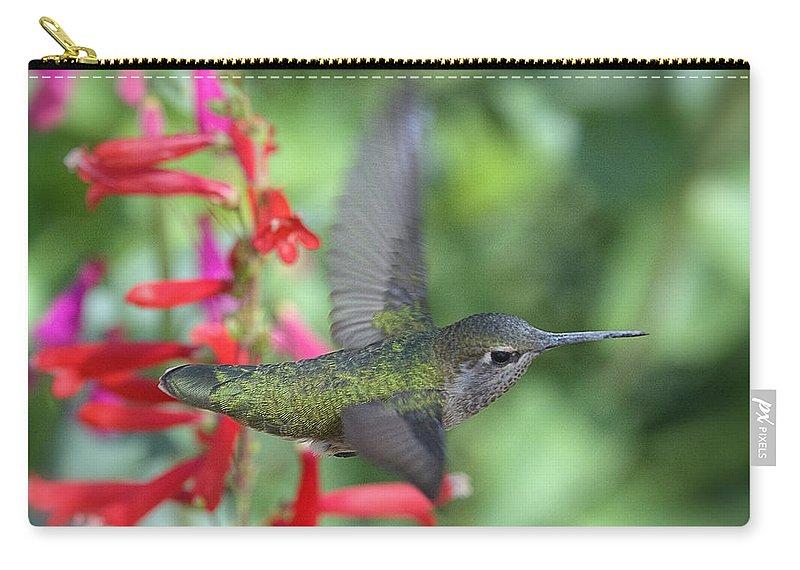 Annas Hummingbird Carry-all Pouch featuring the photograph The Get Away by Saija Lehtonen