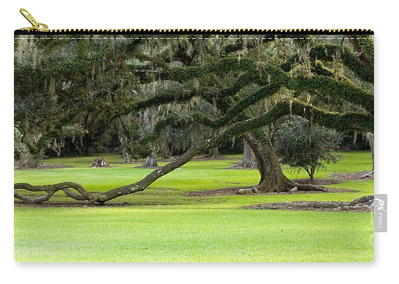 Tree Carry-all Pouch featuring the photograph The Giving Tree by Scott Pellegrin