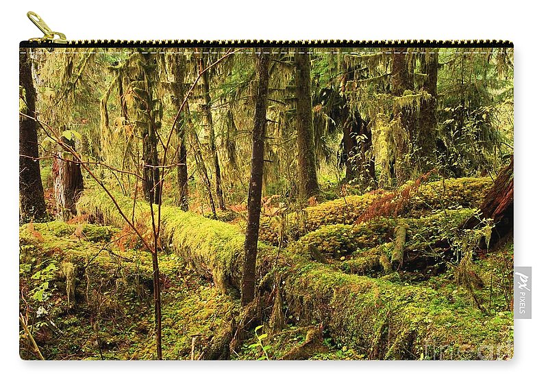 Hoh Rainforest Carry-all Pouch featuring the photograph The Hall Of Mosses by Adam Jewell
