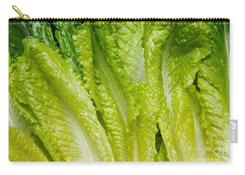 Romaine-lettuce Carry-all Pouch featuring the photograph The Heart Of Romaine by Andee Design