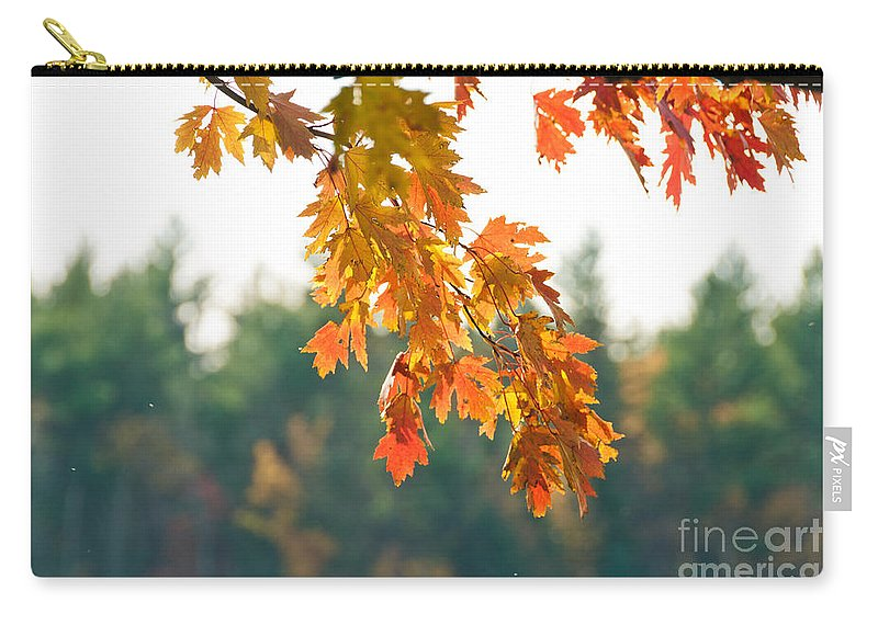 Fall Carry-all Pouch featuring the photograph The Last Bit Of Fall by Cheryl Baxter