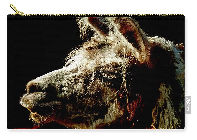 Llama Carry-all Pouch featuring the photograph The Legendary Llama by Steve Taylor