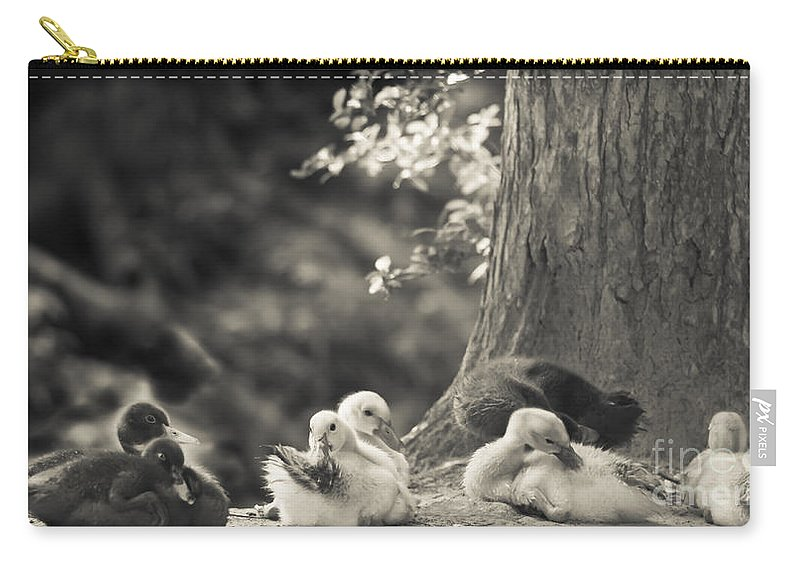 Ducks Carry-all Pouch featuring the mixed media The Little Ones Rest by Kim Henderson