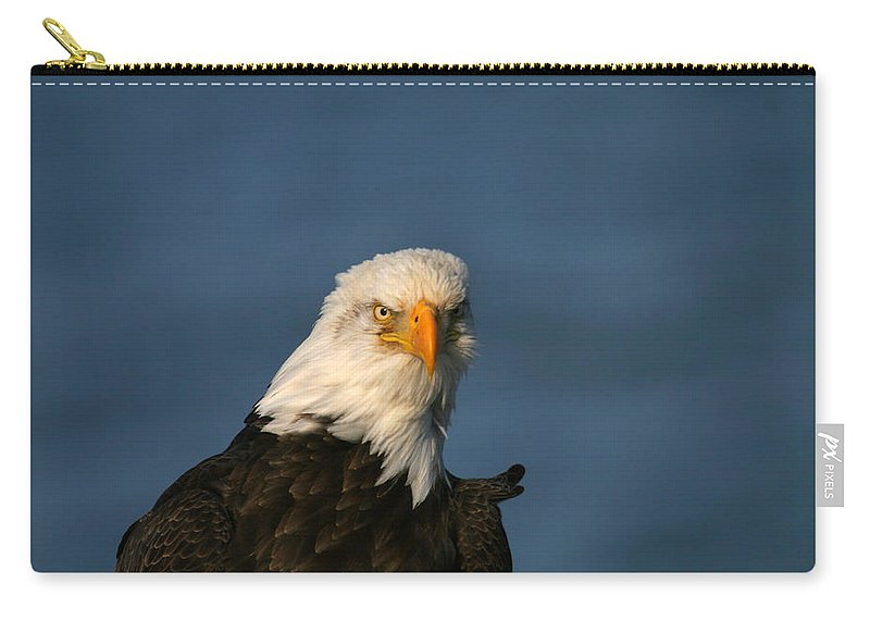Doug Lloyd Carry-all Pouch featuring the photograph The Look by Doug Lloyd