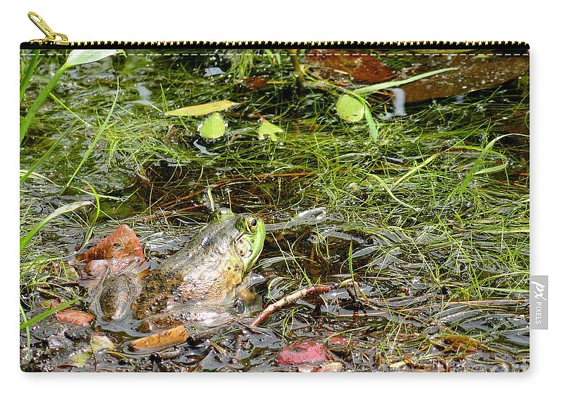 Nature Carry-all Pouch featuring the photograph The Patient Frog by Meandering Photography