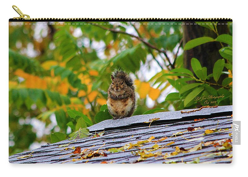 Squirrel Carry-all Pouch featuring the photograph The Poser II by Jeanette C Landstrom