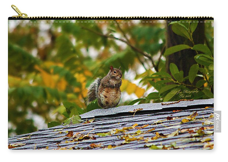 Squirrel Carry-all Pouch featuring the photograph The Poser IIi by Jeanette C Landstrom