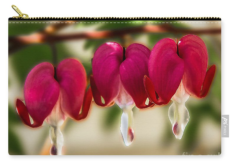 Bleeding Hearts Carry-all Pouch featuring the photograph The Red Heart by Robert Bales