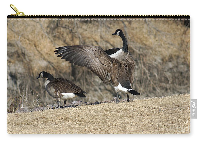 Goose Carry-all Pouch featuring the photograph The Show Off by Lori Tordsen