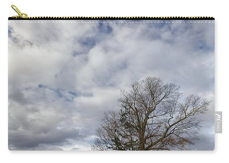 Tree Carry-all Pouch featuring the photograph The Tree At The Side Of The Road by Rick Berk