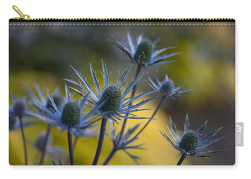 Flower Carry-all Pouch featuring the photograph Thistles Abstract by Mike Reid