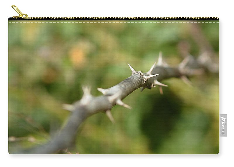 Thorny Carry-all Pouch featuring the photograph Thorny by Lisa Phillips