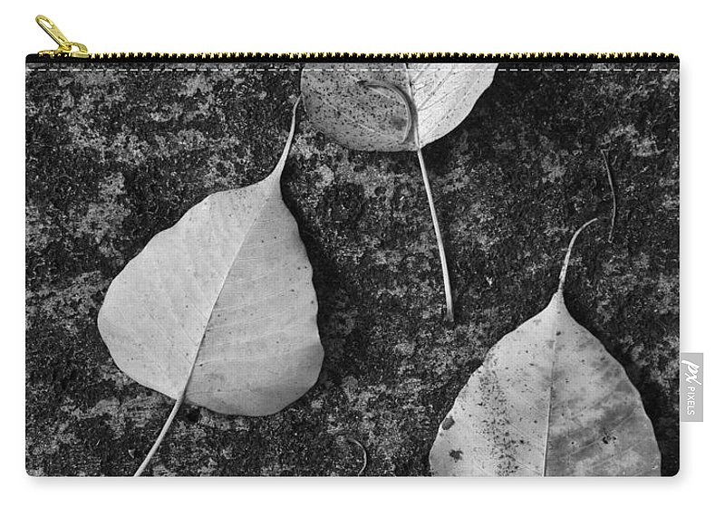 Black And White Carry-all Pouch featuring the photograph Three Leaves by Robert Swinson