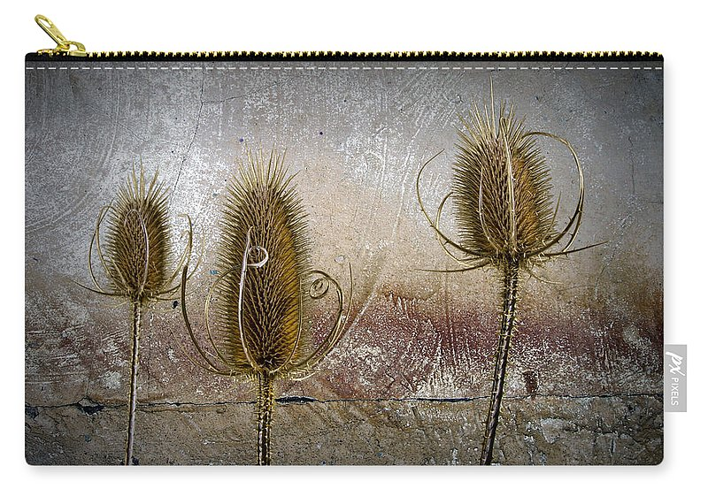 Art Carry-all Pouch featuring the photograph Three Prickly Teasels by Randall Nyhof
