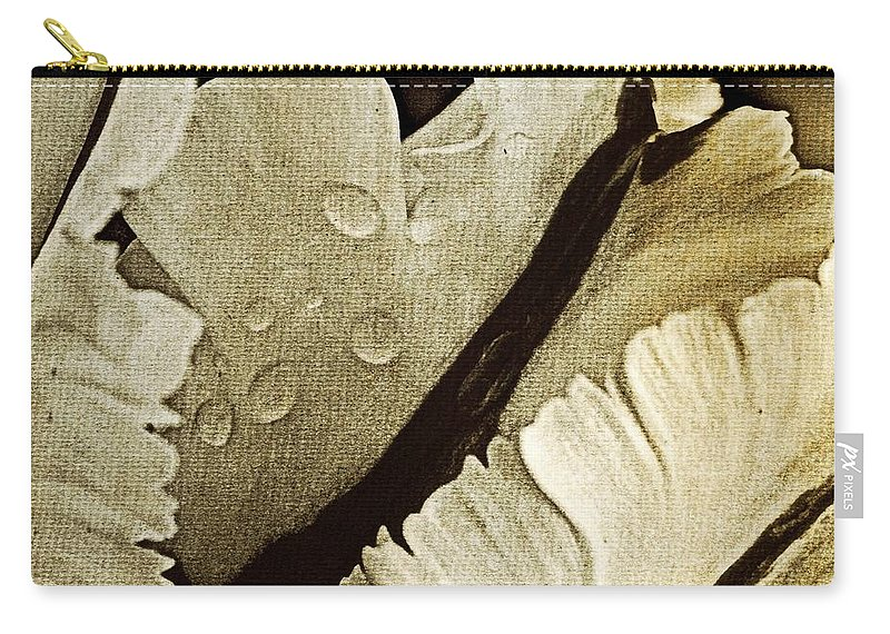 Carry-all Pouch featuring the photograph Three Stripes by Chris Berry