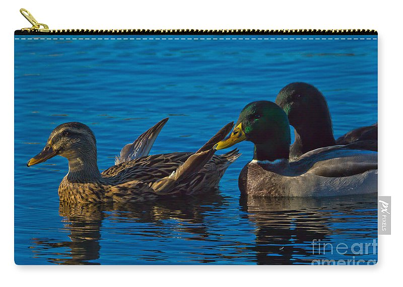 Mallards Carry-all Pouch featuring the photograph Three's Company by Scott Hervieux