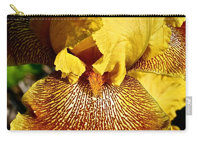 Plant Carry-all Pouch featuring the photograph Tiger Iris by Susan Herber