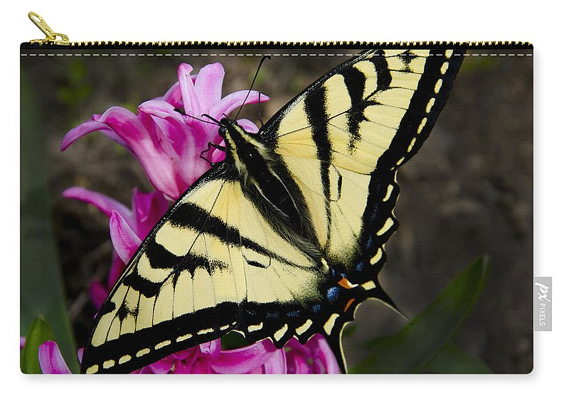 Pink Carry-all Pouch featuring the photograph Tiger Swallowtail On Pink Hyacinth by Jim And Emily Bush