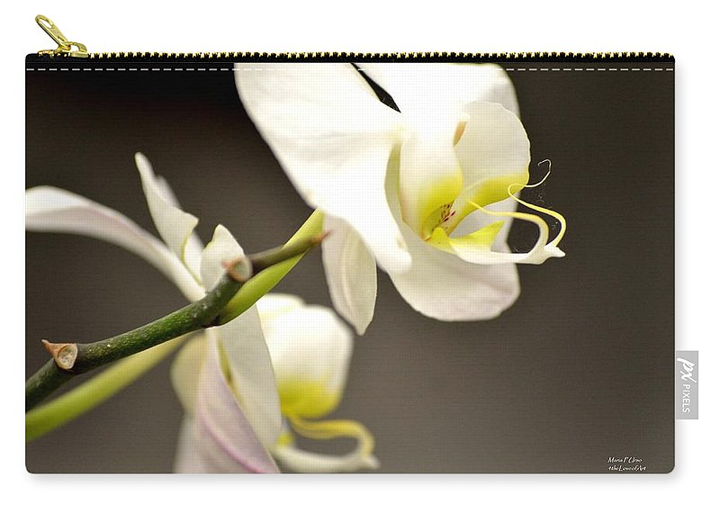 Time Carry-all Pouch featuring the photograph Time To Bloom by Maria Urso