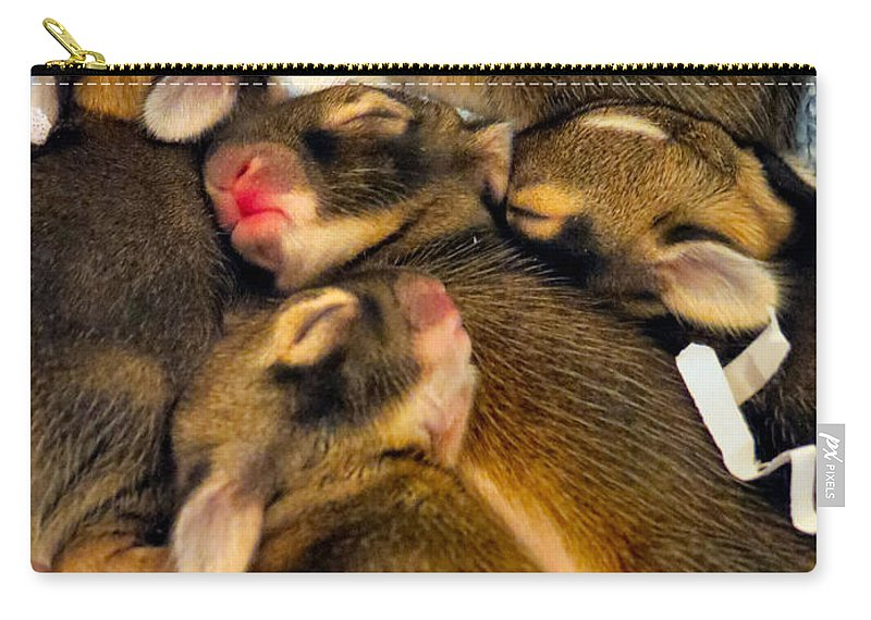 Bunny Carry-all Pouch featuring the photograph Tiny Bunnies by Art Dingo