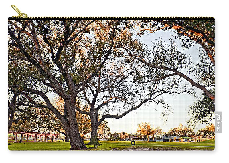 Tire Carry-all Pouch featuring the photograph Tire Swing by Steve Harrington